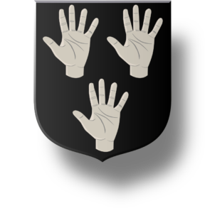 Blason et armoiries famille de Bonnefoy