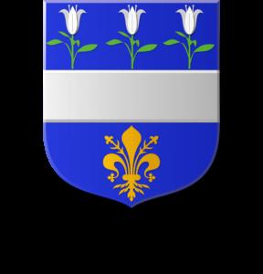 Blason et armoiries famille de Chouly