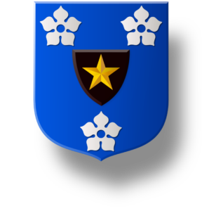 Blason et armoiries famille de Chapuiset