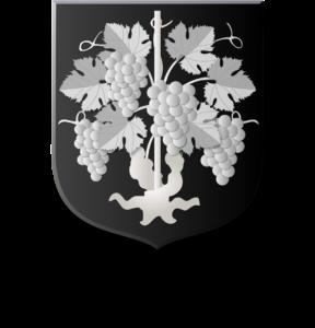 Blason et armoiries famille de Vignolles