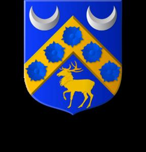 Blason et armoiries famille Yout-Pipien
