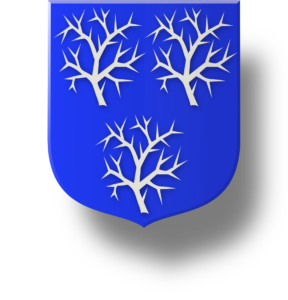 Blason et armoiries famille du Bourg de Bozas