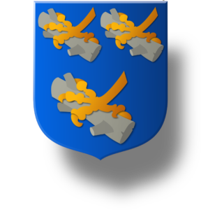 Blason et armoiries famille d''Erard