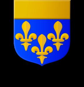 Blason et armoiries famille d'Estaing